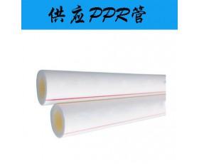供应PPR管
