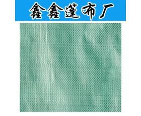 南韩抗晒防水聚乙篷布 (双绿)