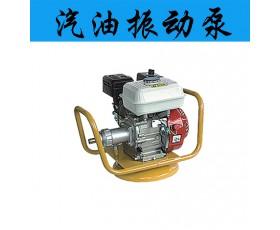 汽油振动泵