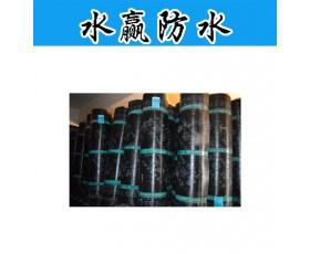 水赢防水 SBS防水卷材