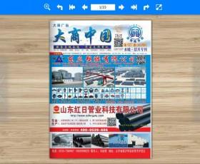 《大商中国》鲁豫皖苏27期水暖洁具B面(电脑版)电子杂志下载