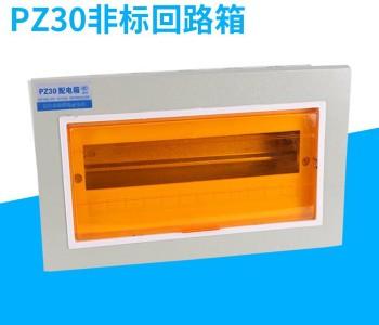 PZ30非标回路箱(明装、暗装)