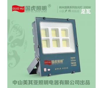国虎照明  7070国美纳米投光灯